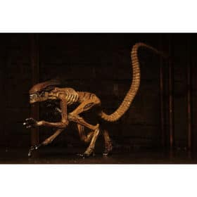 Alien 3: Zubehör-Set Creature Accessory Pack - für Actionfigur - 17-18 cm