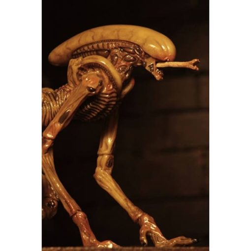 Alien 3: Zubehör-Set Creature Accessory Pack - für Actionfigur - 17-18 cm