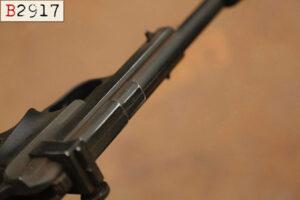 Princess Leia – DDC Defender sporting Blaster – Custom-Painting B2917